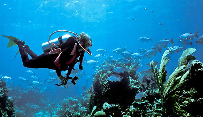 Scuba Diving is an Underwater Activity that Needs Proper Training Against Unfriendly Environment